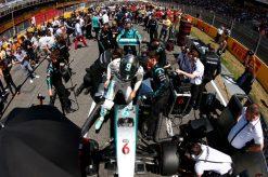 Foto Poster Nico Rosberg op de grid, F1 Mercedes Team 2015
