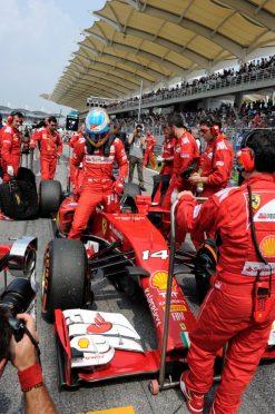 Foto Poster Fernando Alonso op de Grid tijdens de F1 GP Maleisie 2014