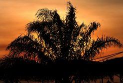 Zonsondergang in Maleisie